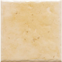 Cotswold Wheat Field Wall Tiles - 100 x 100mm - 25 pack