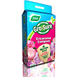 Gro-Sure Ericaceous Compost with 4 Months Feed - 10L