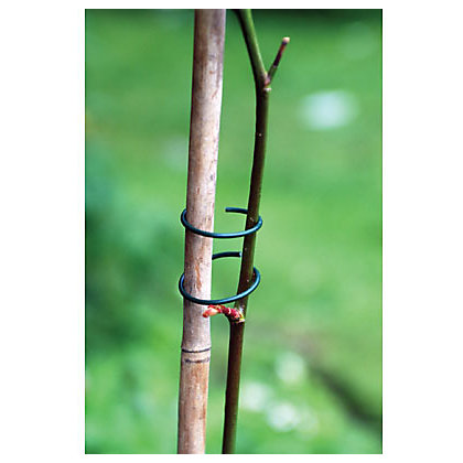 Image for Plant Rings Galvanised Steel - Pack of 50 from StoreName