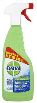 Dettol Mould and Mildew Remover - 750ml
