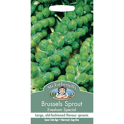 Image for Brussels Sprout Evesham Special (Brassica Oleracea Gemmifera) Seeds from StoreName
