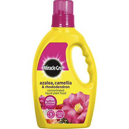 Image for Miracle-Gro Azalea, Camellia and Rhododendron Concentrated Liquid Plant Food - 1L from StoreName