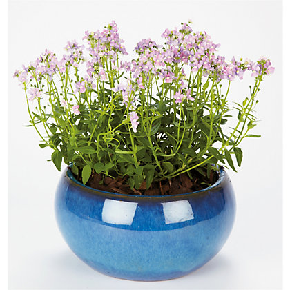 Image for Boscastle Blue Glazed Plant Pot - 38cm from StoreName