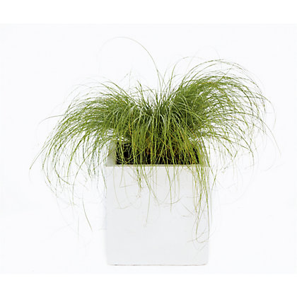 Image for White Clay Cube Plant Pot - 25cm from StoreName