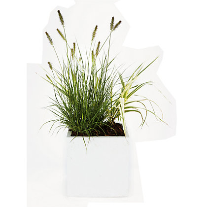 Image for White Cube Planter - 31cm from StoreName