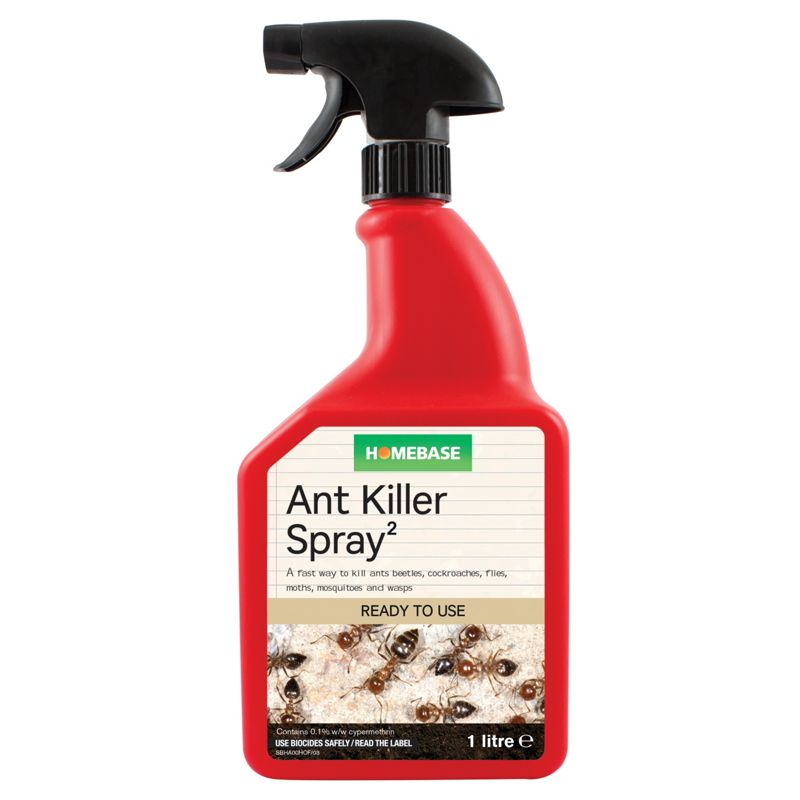 Best Ant Spray For Kitchen