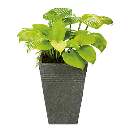Image for Piazza Tall Garden Plant Pot in Black Granite from StoreName