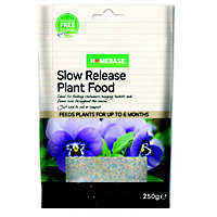 Homebase Value Slow Release Plant Food - 250g