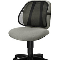 Fellowes Mesh Back Support.