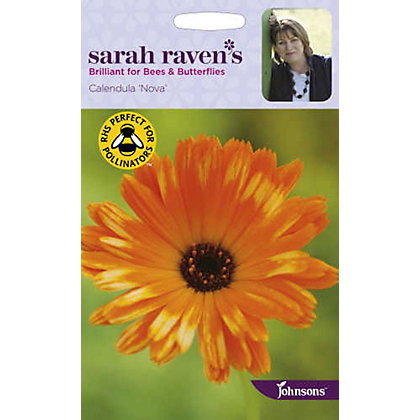 Image for Sarah Ravens - Calendula Pot Marigold Nova from StoreName