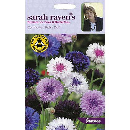 Image for Sarah Ravens Cornflower Polka Dot Seeds from StoreName