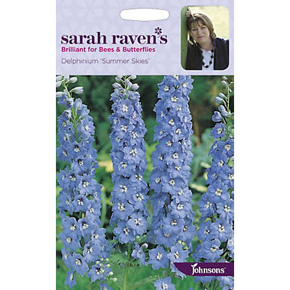 Image for Sarah Ravens - Delphinium Summer Skies from StoreName