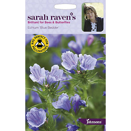 Image for Sarah Ravens - Echium Blue Bedder from StoreName