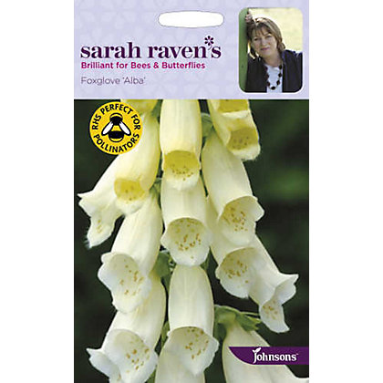 Image for Sarah Ravens - Foxglove Alba from StoreName