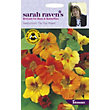 Sarah Ravens - Nasturtium Tip Top Mixed