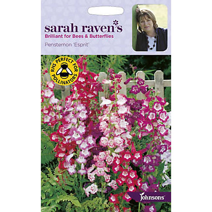 Image for Sarah Ravens Penstemon Esprit Seeds from StoreName