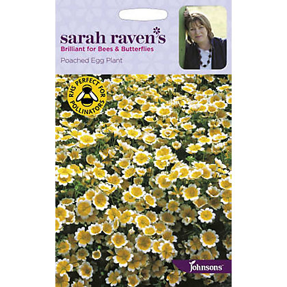 Image for Sarah Ravens - Poached Egg Plant from StoreName