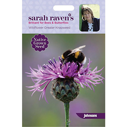 Image for Sarah Ravens - Wildflower Greater Knapweed from StoreName