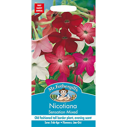 Image for Nicotiana Sensation Mixed Seeds from StoreName