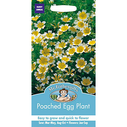 Image for Poached Egg Plant Seeds from StoreName