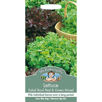 Image for Lettuce Salad Bowl Seeds - Red And Green from StoreName