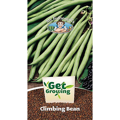 Image for Get Growing - Climbing Bean from StoreName