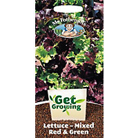 Get Growing - Lettuce, Loose Leaf Red and Green Mixed