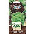 Get Growing - Lettuce, Loose Leaf Mixed