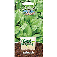 Get Growing - Spinach