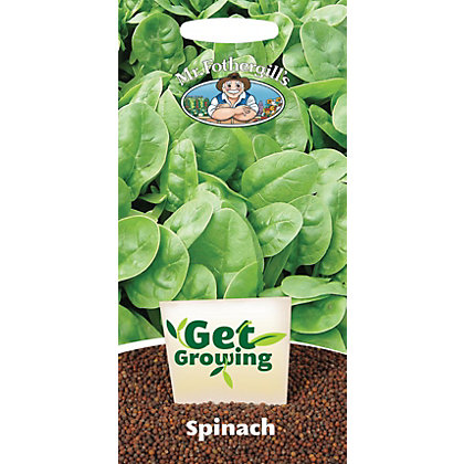 Image for Get Growing - Spinach from StoreName