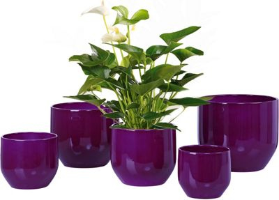 plant pot pure violet 28cm myzz. Black Bedroom Furniture Sets. Home Design Ideas