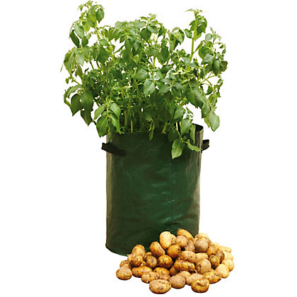 Image for Potato Patio Planters from StoreName