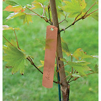 Copper Hanging Labels (Pack of 10)