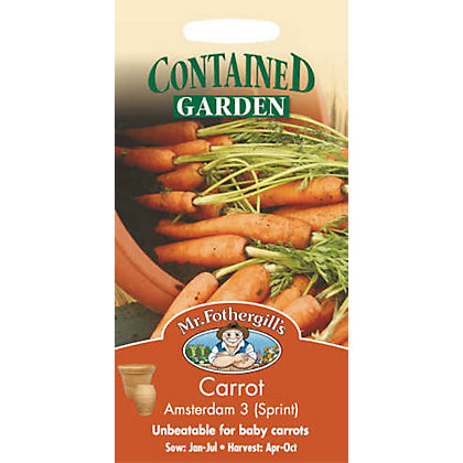 Image for Carrot Amsterdam 3 Sprint (Daucus Carota) Seeds from StoreName