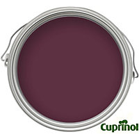 Cuprinol Garden Shades Summer Damson Tester Pot - 50ml