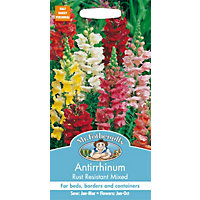 Antirrhinum Rust Resistant Mixed (Antirrhinum Majus) Seeds
