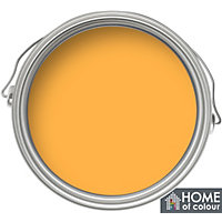 Home of Colour Buttercup - Quick Drying Gloss Paint - 750ml