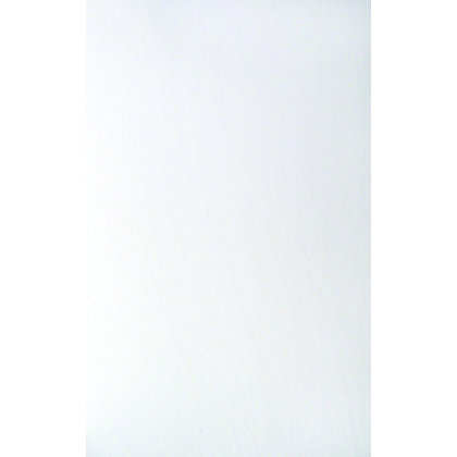 Image for Edinburgh Wall Tiles - White Field - 248 x 398mm - 10 pack from StoreName