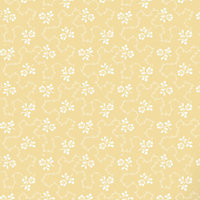 Home of Colour Lym Wallpaper - Yellow
