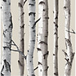 Fine Decor Birch Tree Wallpaper - Natural
