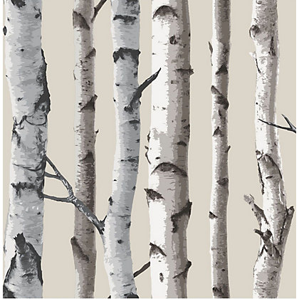 Image for Fine Decor Birch Tree Wallpaper - Natural from StoreName