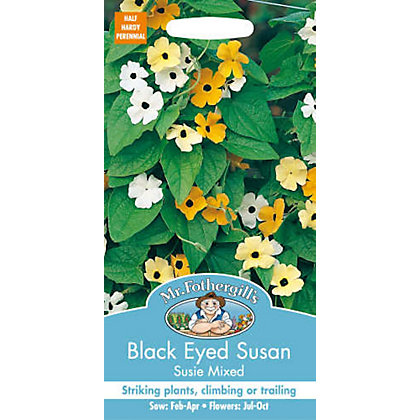 Image for Black Eyed Susan Susie Mixed (Thunbergia Alata) Seeds from StoreName
