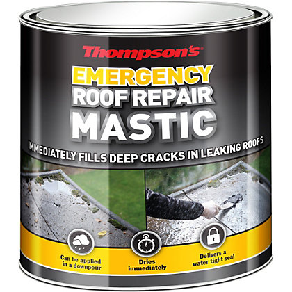 Image for Thompsons Emergency Roof Repair Mastic from StoreName