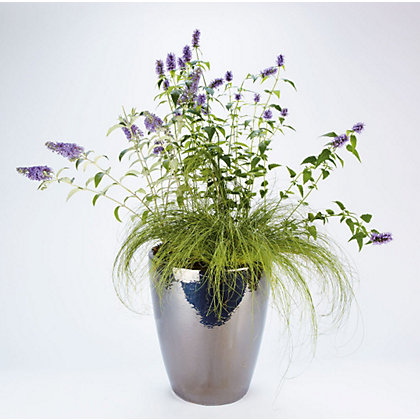 Image for Mawes Silver Glazed Plant Pot - 38cm from StoreName