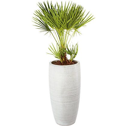 Image for Praa Grey Clay Plant Pot - 78cm from StoreName