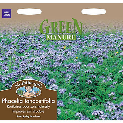 Image for Phacelia Tanacetifolia Green Manure Seeds from StoreName