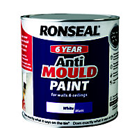 Ronseal Anti Mould Paint - 2.5L White Matt