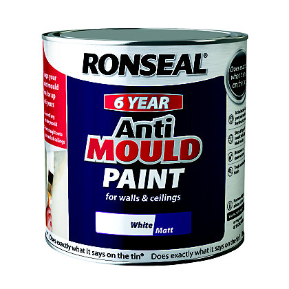 Image for Ronseal Anti Mould Paint - 2.5L White Matt from StoreName