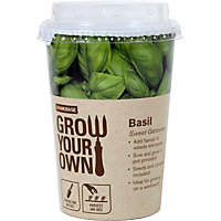Grow Your Own Herb Pot - Basil
