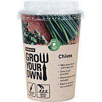 Grow Your Own Pots - Chives
